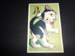 Carte ( 74 ) Avec Yeux Mobiles ( En Plastique )  -  Chat  Kat - Cartoline Con Meccanismi