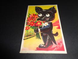 Carte ( 78 ) Avec Yeux Mobiles ( En Plastique )  -  Chien  Hond - Cartoline Con Meccanismi
