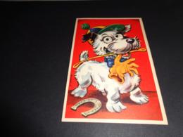 Carte ( 79 ) Avec Yeux Mobiles ( En Plastique )  -  Chien  Hond - Cartoline Con Meccanismi