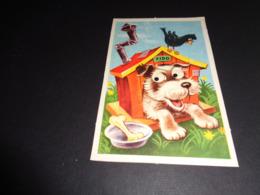 Carte ( 80 ) Avec Yeux Mobiles ( En Plastique )  -  Chien  Hond - Met Mechanische Systemen