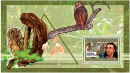 Guinea 2006 Fauna  Birds , Owls  Ornithologist - Guinée (1958-...)