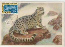 Afghanistan Carte Maximum Animaux 1964 Léopard 756 - Afghanistan