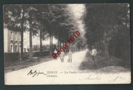 Jehay -  (Amay)  Le Saule-Gaillard. Belle Carte Animée - Amay