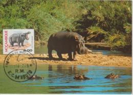 Mozambique Carte Maximum Animaux 1976 Hippopotame 623 - Mozambique