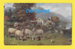 """ Sheeps Pasturing "" Tuck OILETTE Pleasant Pastures Series 9470 ☺♦♦ - Tuck, Raphael"