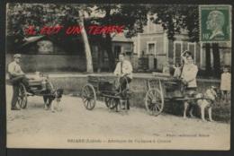 45 BRIARE - Attelage De Voitures à Chiens - TOP RARE - Briare
