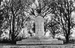Nederland Zeeland   Sluis    Standbeeld J.H. Van Dale     L 964 - Sluis