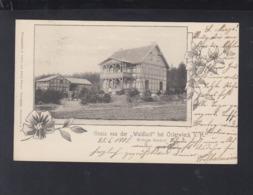 Dt. Reich AK Waldlust Bei Osterwiek 1905 - Germania