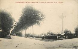 - Depts Div-ref-AM250- Deux Sèvres - Frontenay Rohan Rohan -route De La Rochelle Et Du Calvaire - Calvaires - - Frontenay-Rohan-Rohan