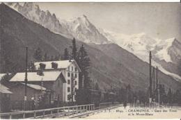 74 GARE DES TINES ET HOTEL FORET DES TINES LIGNE DE TRAIN A VOIX METRIQUE FAYET CHAMONIX MONT BLANC VALLORCINE  MARTIGNY - Chamonix-Mont-Blanc