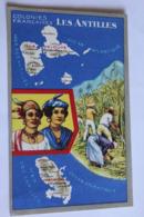Colonies Francaises Les Antilles Edit Per Les Produits Lion Noir - Pointe A Pitre