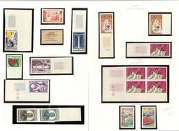 * Collection. Non Dentelé. 1945-1963. - TB (cote Maury) - French Somali Coast (1894-1967)