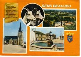 18 Sens Beaujeu Vers Sancerre Chèvres Berrichonnes Fontaine Bar Tabac PUB Mutzig Citroën Ami 6 Renault 4L - Sancerre
