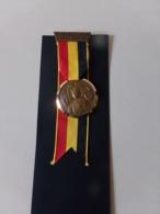 """Suisse Médaille En Bronze Avec Ruban """" Marche De La Sarine 1971, Ecuvillens-Posieux  """" Les Costumes Nationaux Berne - Tokens & Medals"""
