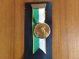 """Suisse Médaille En Bronze Avec Ruban """" Marche De La Sarine 1969, Ecuvillens-Posieux  """" Les Costumes Nationaux Vaud - Tokens & Medals"""