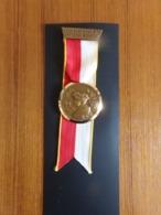 """Suisse Médaille En Bronze Avec Ruban """" Marche De La Sarine 1970,, Ecuvillens-Posieux  """" Les Costumes Nationaux Valais - Tokens & Medals"""
