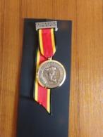 "Suisse Médaille En Bronze Avec Ruban "" 19 Marche Du Rütli, 1971, Bavois Paul Kramel Neuchatel, Winkelried - Tokens & Medals"