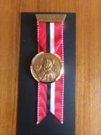 """Suisse Médaille En Bronze Avec Ruban """" Marche De La Sarine 1976, Ecuvillens-Posieux  """" Les Costumes Nationaux Glaris - Tokens & Medals"""