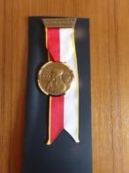 """Suisse Médaille En Bronze Avec Ruban """" Marche De La Sarine 1976, Ecuvillens-Posieux  """" Les Costumes Nationaux Bale - Tokens & Medals"""