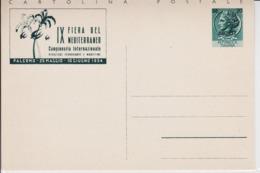 Trieste A, Cartolina Postale C 2 Nuova  (05351) - Sin Clasificación