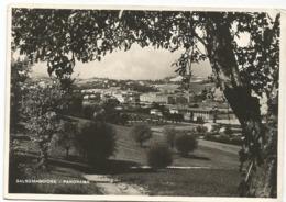 W4509 Salsomaggiore Terme (Parma) - Panorama / Viaggiata 1951 - Italien