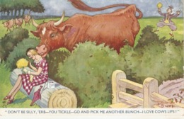 """""""Don't Be Silly,Erb- You Tickle- Go And Pick Me.."""" Tuck Oilette Humorous Ser. PC # 5026 - Humour"""