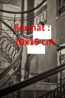 Reproduction D'une Photographie Ancienne D'une Jeune Femme Nue Descendant De Très Grands Escaliers - Reproductions