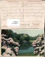 629693,New England Gardens Park Blumen US - Vereinigte Staaten