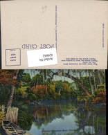 629662,Beautiful Suwannee River Florida - Ohne Zuordnung