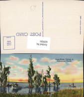 629591,Fresh-Water Fishing In Pictoresque Florida - Ohne Zuordnung