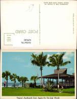 629540,Tropical Lowdermilk Park Naples-on-The-Gulf Florida - Ohne Zuordnung