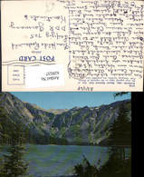 629537,Avalanche Lake Glacier National Park Montana - Ansichtskarten