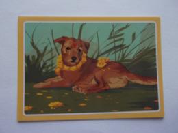 PANINI ANIMAL WORLD Animaux N°482 Chien Dog Hund Perro Kutya - Edition Française