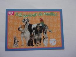 PANINI ANIMAL WORLD Animaux N°460 Chien Dog Hund Perro Kutya Chat Cat Katze Gato Poisson Perroquet - Edition Française