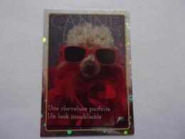 PANINI ANIMAL WORLD Animaux N°83 Chien Dog Hund Perro Kutya - Edition Française
