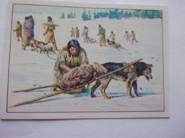 PANINI WEST Cow Boy Indien Cavalerie N°21 Chien Dog Hund Perro Kutya - Edition Française