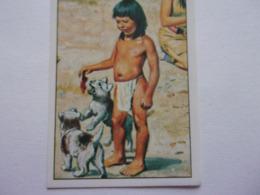 PANINI WEST Cow Boy Indien Cavalerie N°116 Chien Dog Hund Perro Kutya Enfant Kind Child Nino - Edition Française