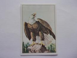PANINI WEST Cow Boy Indien Cavalerie N°100 Aigle Eagle Aguila Adler - Edition Française