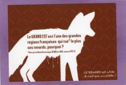 57 LE RENARD Est Utile Il N'est Pas Nuisible  LE GRAND EST Est L'une Des Régions Françaises Qui Tue Le Plus Ses Renards - France