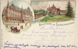 SOUVENIR DE LUXEMBOURG  -  Künzli Frères,Zürich,déposé Nr 828   2 Scans - Cartes Postales