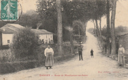 Darney - Route De Monthureux Sur Saône - Darney