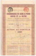 Action Ancienne - Sté Anonyme Des Charbonnages De Haine-St-Pierre Houssu Et La Hestre - Titre De 1905 - Rare - Mines