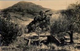 SUDAFRICA , TARJETA POSTAL NO CIRCULADA  , AMAJUBA HILL - Sudáfrica