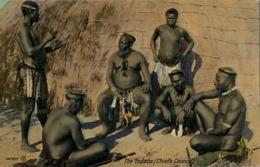 SUDAFRICA , TARJETA POSTAL NO CIRCULADA  , THE INDABA ( CHIEFS COUNCIL ) , TEMA ÉTNICO , TRIBAL , ETNICAL - África