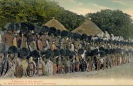 SUDAFRICA , TARJETA POSTAL NO CIRCULADA  , A REGIMENT OF ZULU WARRIORS , TEMA ÉTNICO , TRIBAL , ETNICAL - África
