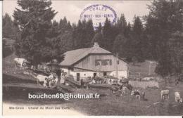 Suisse - Vaud - Ste-Croix - Chalet Du Mont Des Cerfs Kuhe Kuh Vaches Chevres Ziegen Goat Tres Rare - VD Waadt