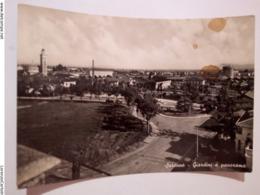 SARONNO Giardini E Panorama VIAGGIATA 1955 - Varese