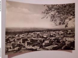 DOLIANOVA Rione Sicci S. Biagio Panorama VIAGGIATA 1956 - Cagliari