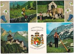 Fürstentum Principality Liechtenstein; Schloss Vaduz Mit Falknis, Nationaltracht, Alpabfahrt - Liechtenstein