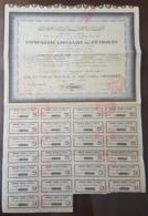 Original Lebanon Bond 1953 COMPAGNIE LIBANAISE DES PETROLES With Coupons, Lebanese Petroleum Company - Lebanon